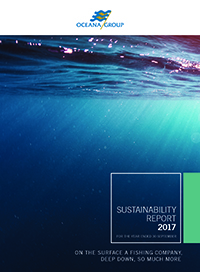 Sustainability development report 2017