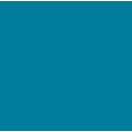Oceana - Transformation strategy icon