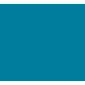 Oceana - Optimising strategy icon
