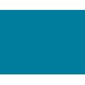 Oceana - Stewardship strategy icon