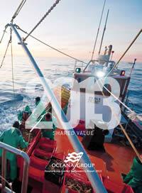 Sustainability development report 2013